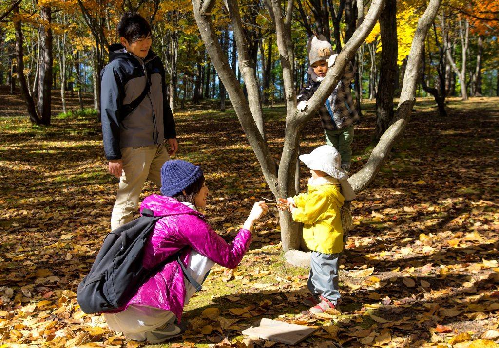 遊びに来た町の子どもたちと一緒に落ち葉拾いも満喫。持って帰ってしおりにしよう。