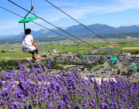 Choei Lavender Park and Hokuseiyama Ski Area