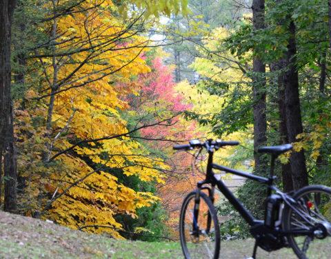 Tocotoco Cycling