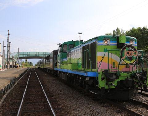 Norokko Train 01