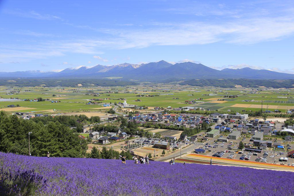 展望台から、中富良野の街並みと十勝岳連峰を一望することも。